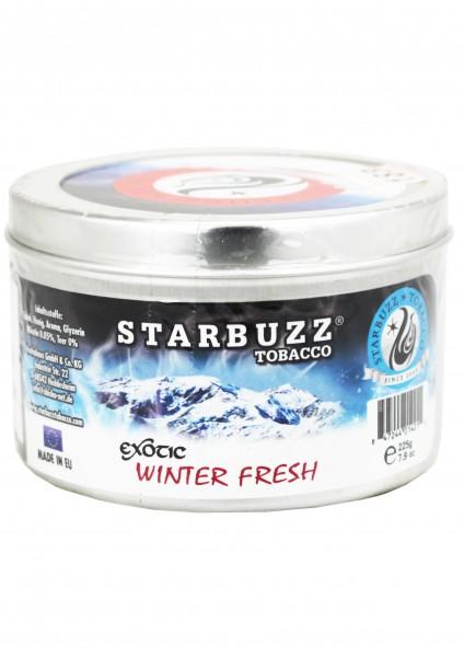 Starbuzz - Winter Fresh - 200g